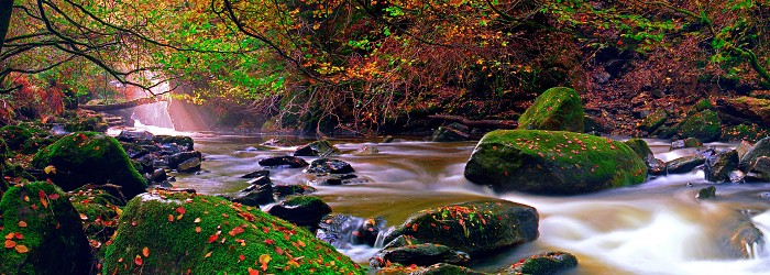 The Birks of Aberfeldy, Perthshire. October 2005. Konica Minolta 5D 18–70mm.